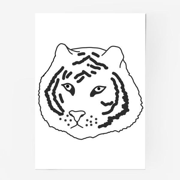 Постер «тигр черно-белый»