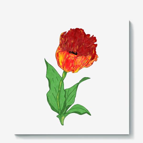 Холст «Тюльпан»