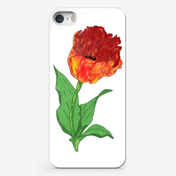 Чехол iPhone «Тюльпан»