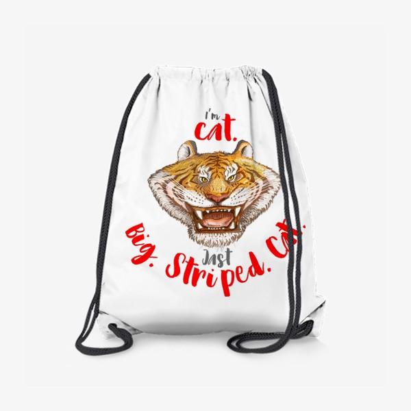 Рюкзак «Тигр Big Cat»
