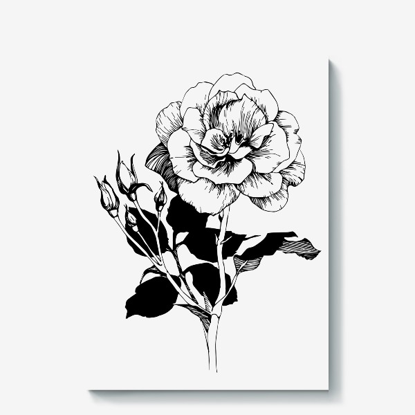 Холст «Роза. Черно-белая графика»