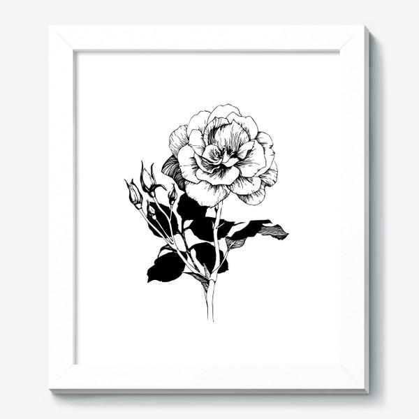 Картина «Роза. Черно-белая графика»
