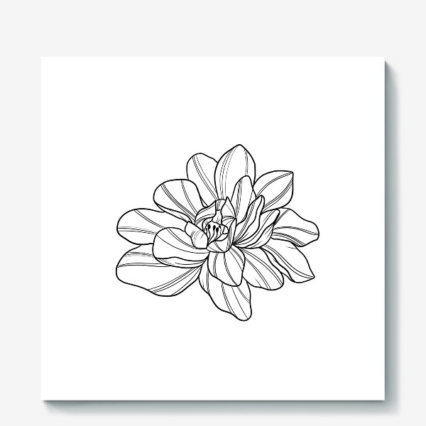 Холст «Flower»