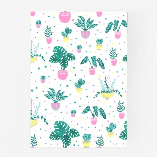 Постер «Комнатные цветы/кактусы»