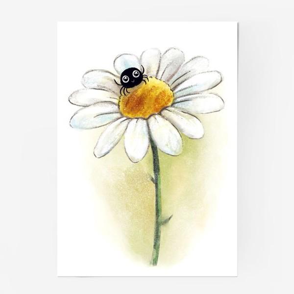 Постер «Паучок на ромашке»