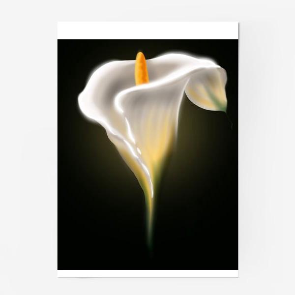 Постер «Неоновая калла»