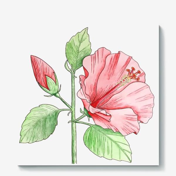 Холст «Цветущий гибискус»