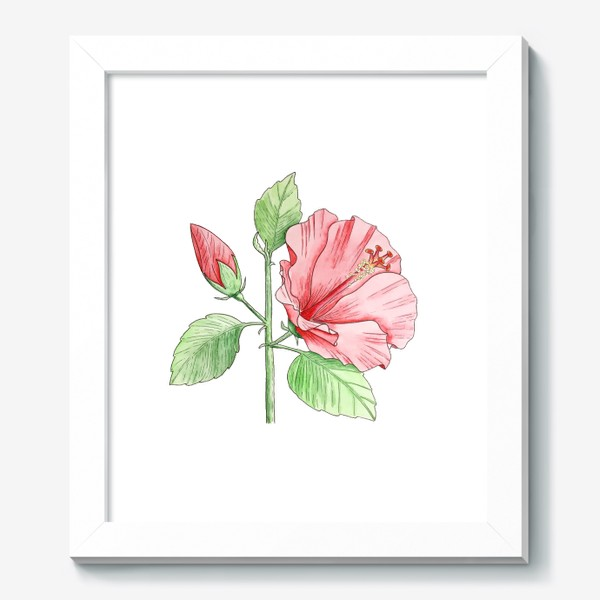 Картина «Цветущий гибискус»
