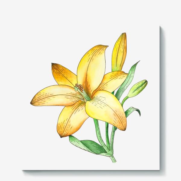 Холст «Желтый лилейник»