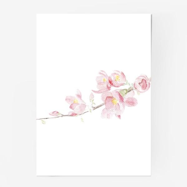 Постер «Весенняя сакура. Душа цветет...»