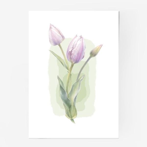 Постер «Светло-сиреневые тюльпаны Букет 1»