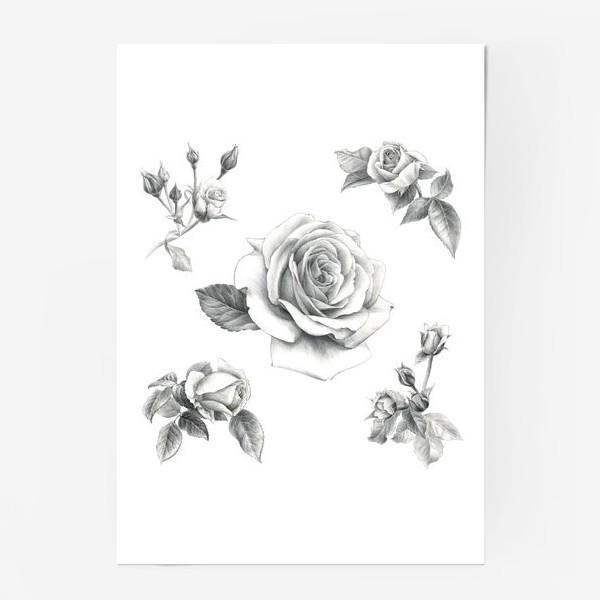 Постер «Винтажные розы на белом фоне ПОСТЕР»