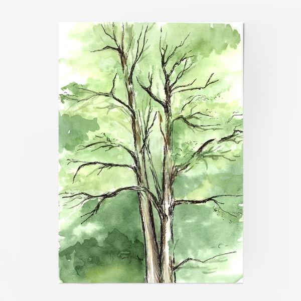 Постер «Летнее дерево.»