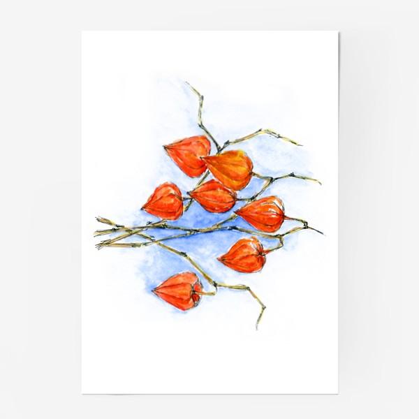 Постер «Осенние фонарики. Физалис.»