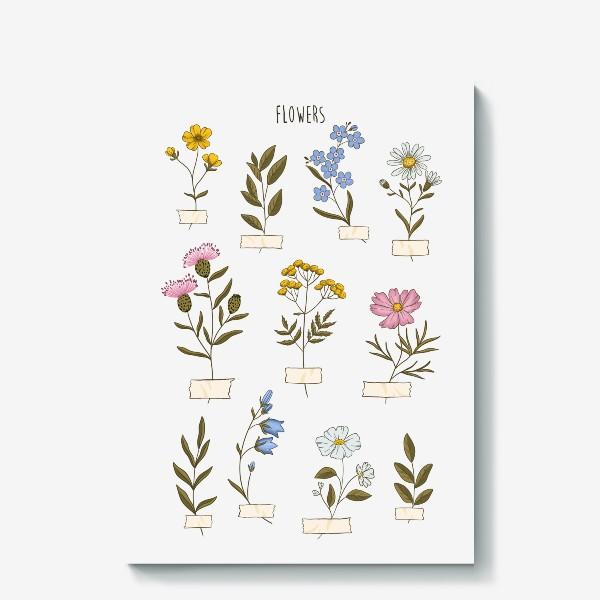 Холст «Полевые цветы»