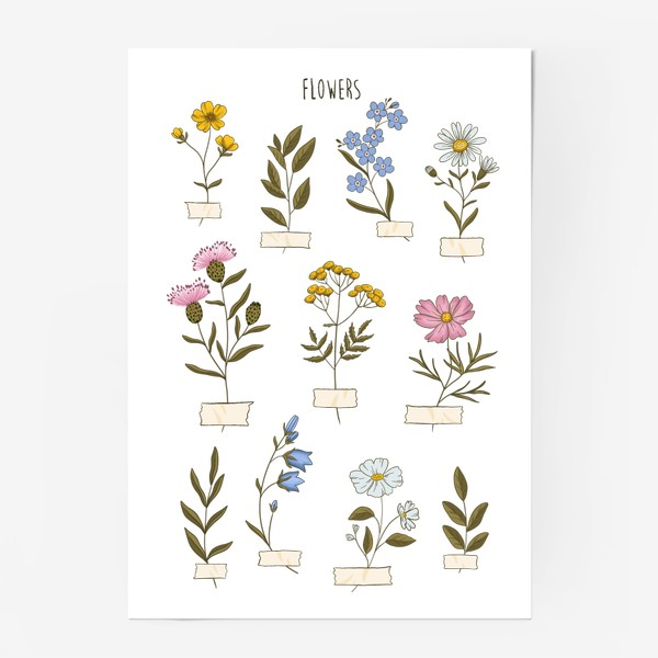Постер «Полевые цветы»