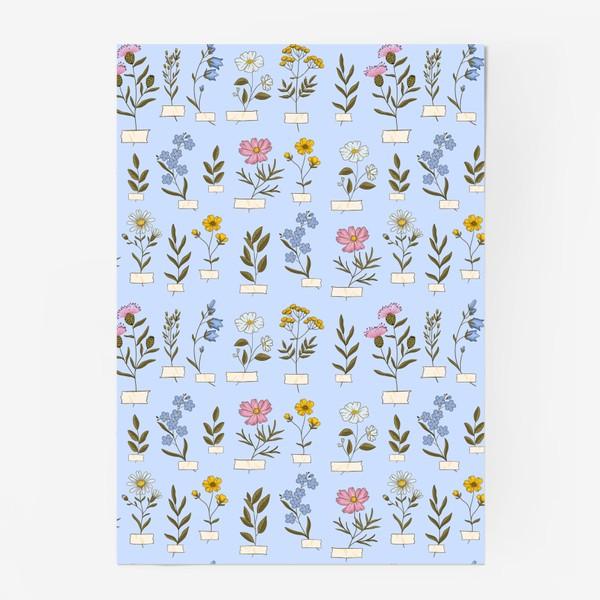 Постер «Полевые цветы на голубом»