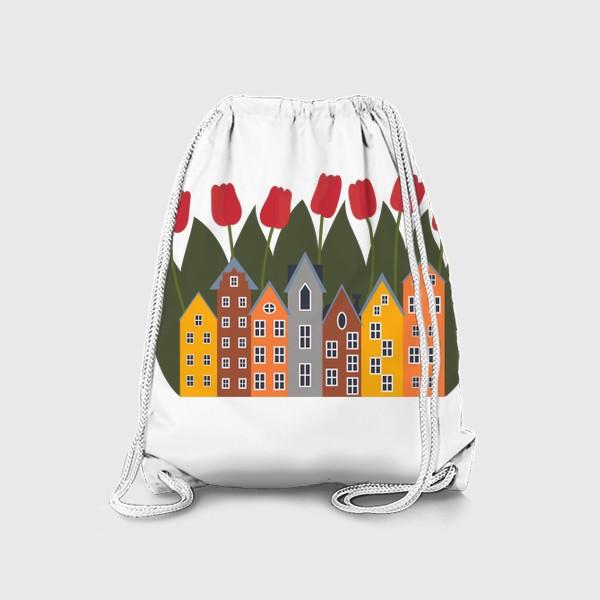 Рюкзак «Голландия»