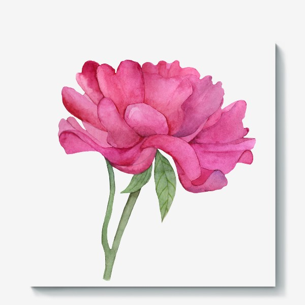 Холст «Розовый пион»