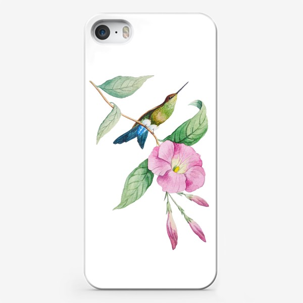 Чехол iPhone «Колибри с синим хвостом»