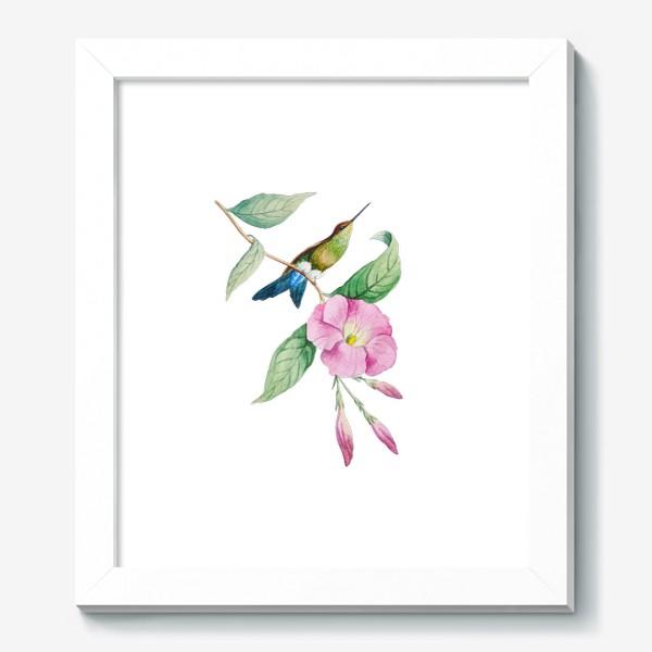 Картина «Колибри с синим хвостом»