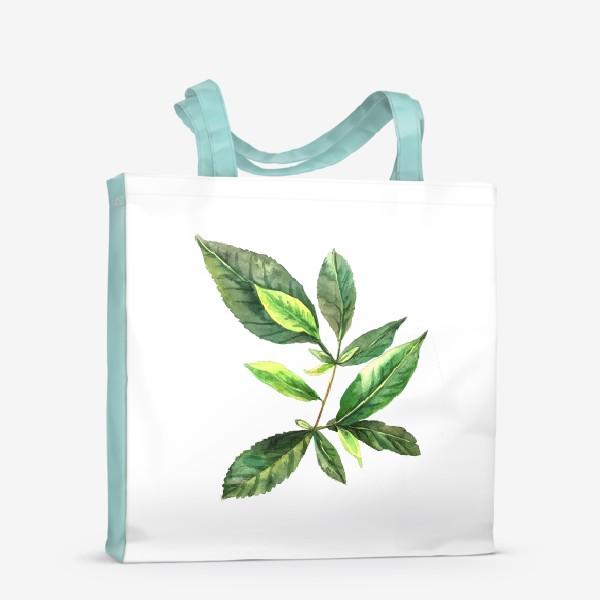 Сумка-шоппер «Зеленый чай. Ботанический скетч. »