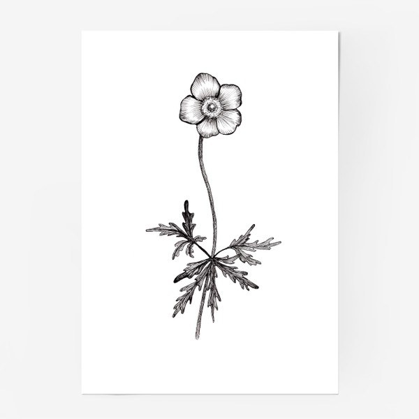 Постер «Лютики цветочки...»