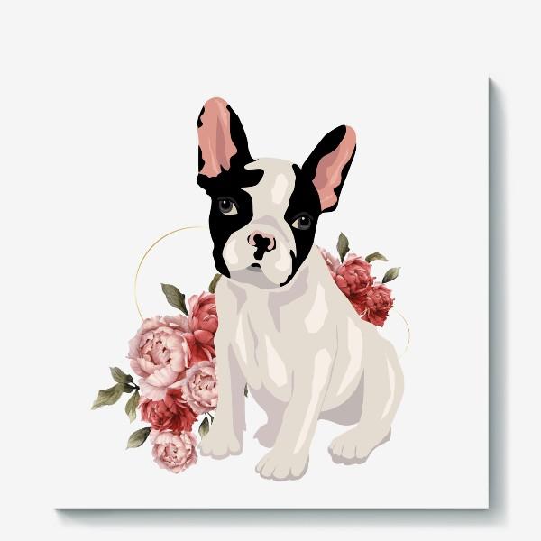Холст «Собака французский бульдог»