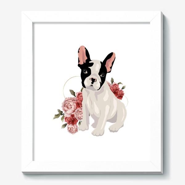 Картина «Собака французский бульдог»