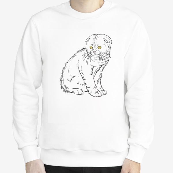 Свитшот «Вислоухий котенок рисунок»