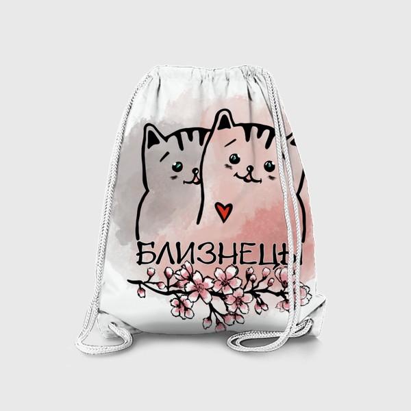 Рюкзак «Близнецы.  Коты - котики. »