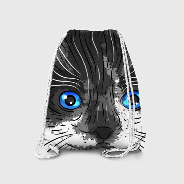 Рюкзак «Котик красавчик»