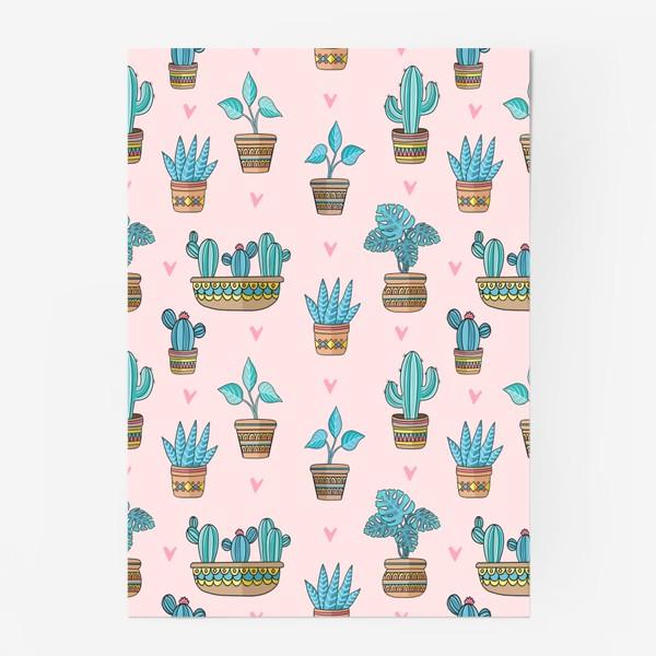 Постер «Кактусы / домашние цветы»