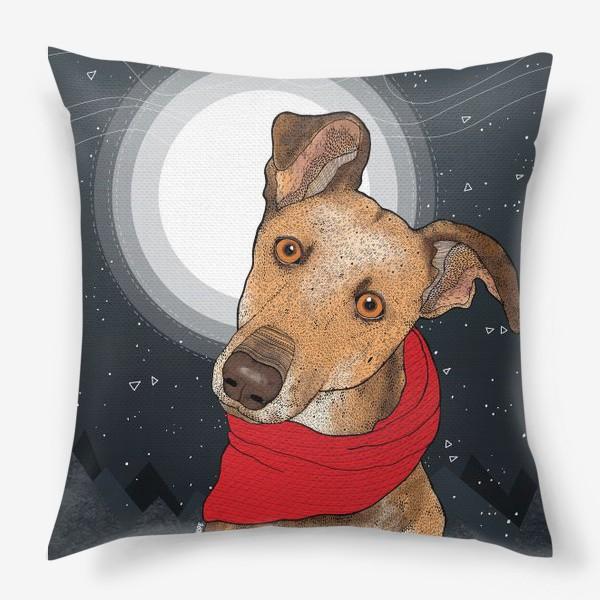 Подушка «Собака по имени Нудлс»