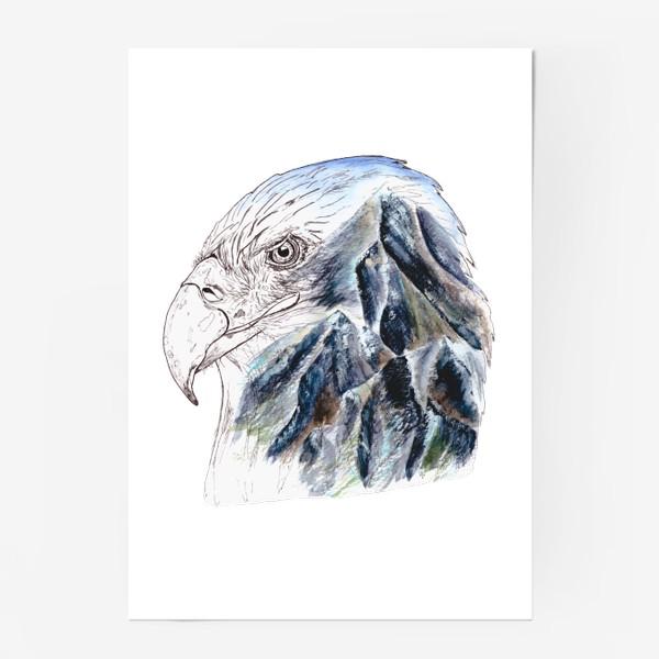 Постер «Орел и горы»