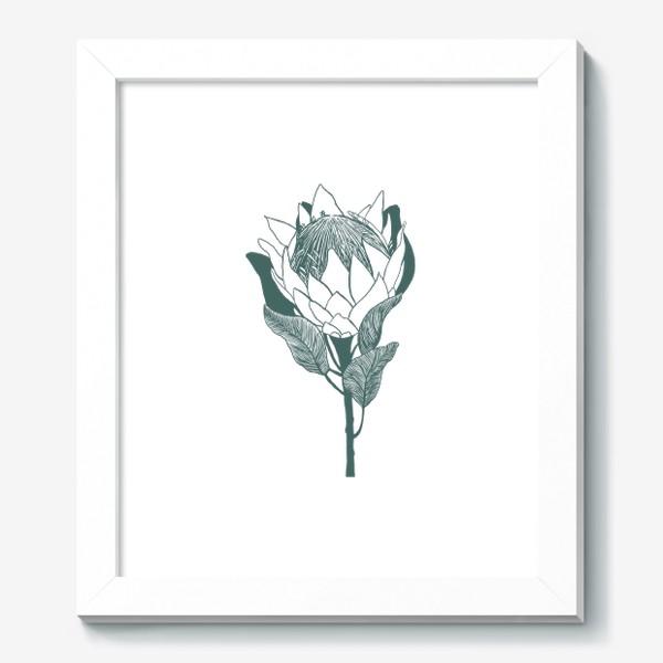 Картина «Цветок протеи в графическом стиле»