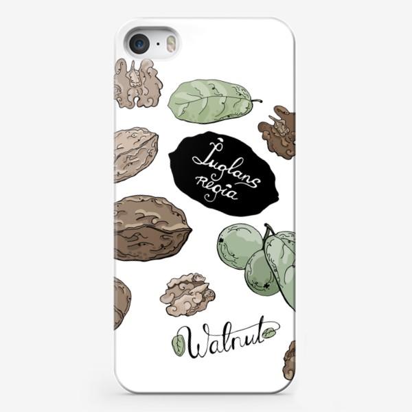 Чехол iPhone «Грецкий орех во всей красе»