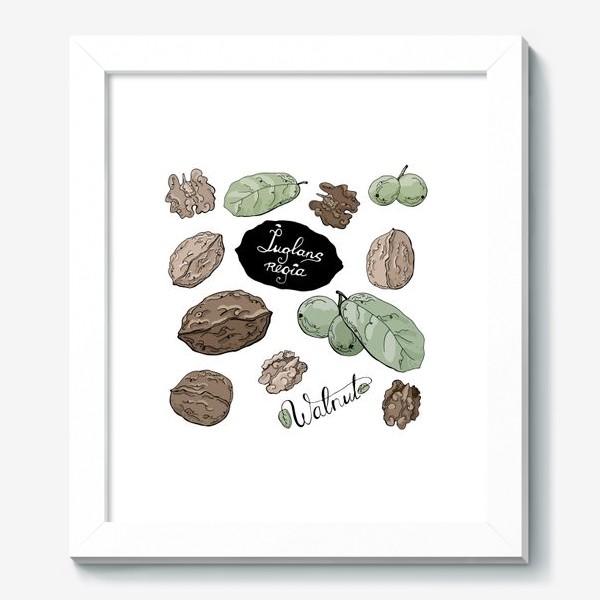 Картина «Грецкий орех во всей красе»