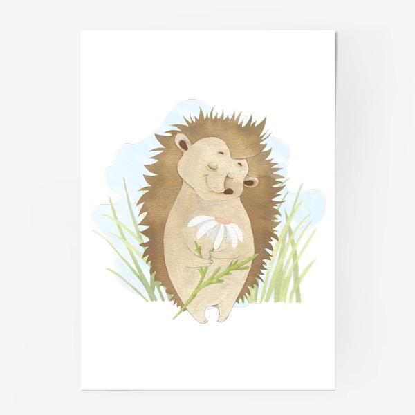 Постер «Ёжик с ромашкой»