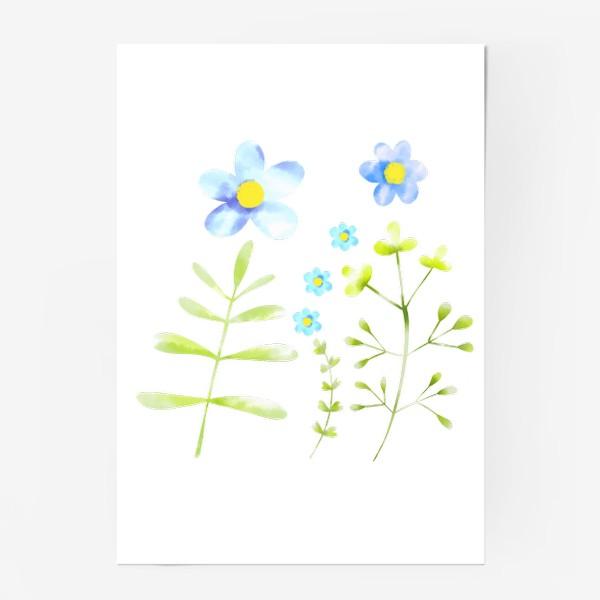 Постер «Голубые акварельные цветы»