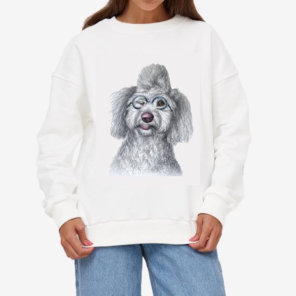Свитшот «Собака в очках»