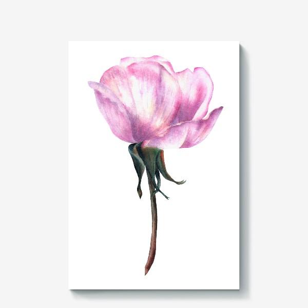 Холст «Нежность розы»