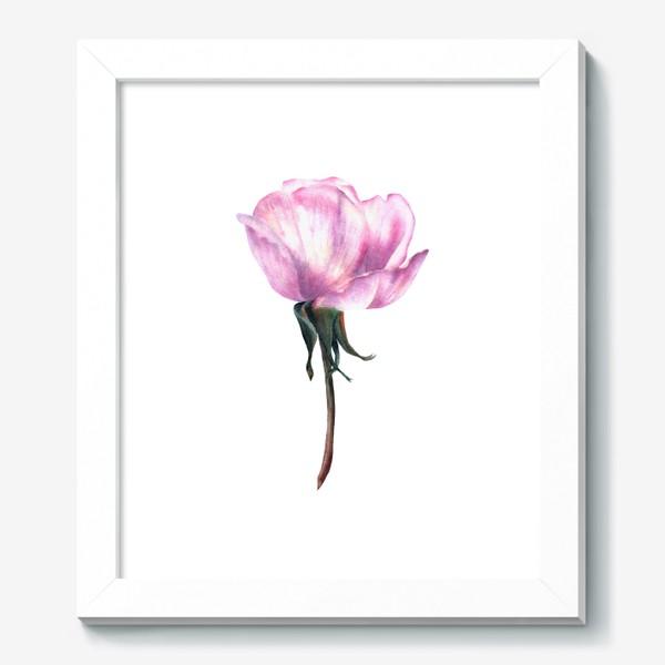Картина «Нежность розы»