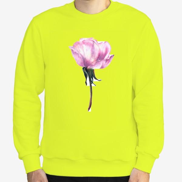 Свитшот «Нежность розы»