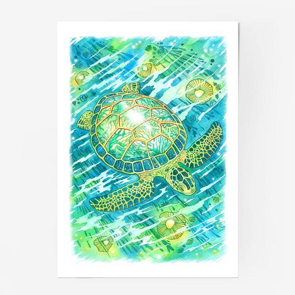 Постер «Черепашка»