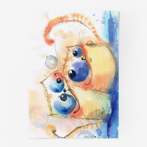 Постер «Теплые коты»