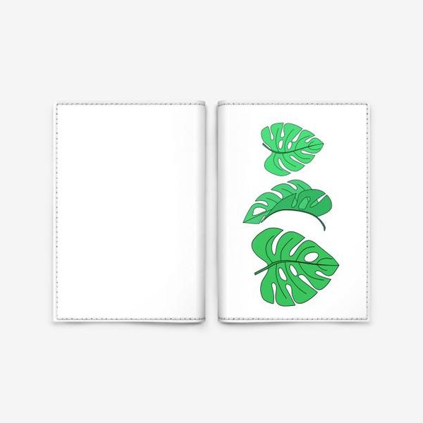 Обложка для паспорта «Монстера листья на белом фоне»