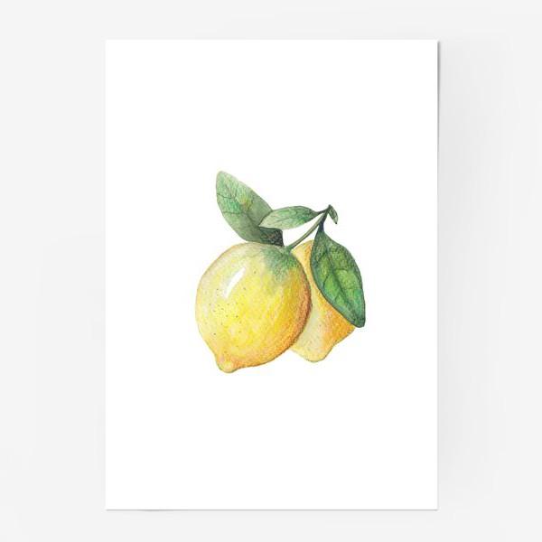 Постер «Лимон на белом фоне»