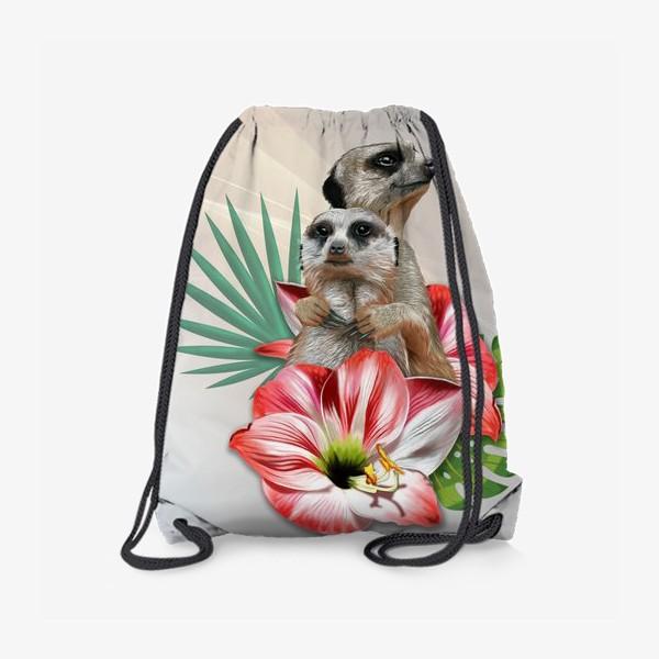 Рюкзак «Влюбленные сурикаты»