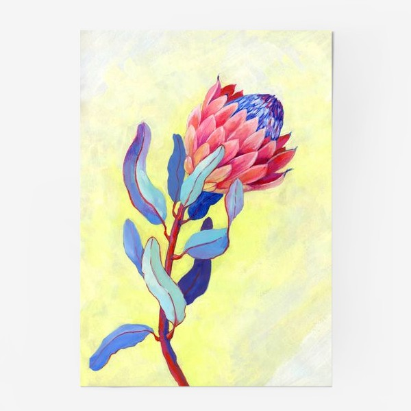 Постер «Яркий цветок протея»